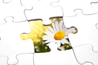 puzzle and flower